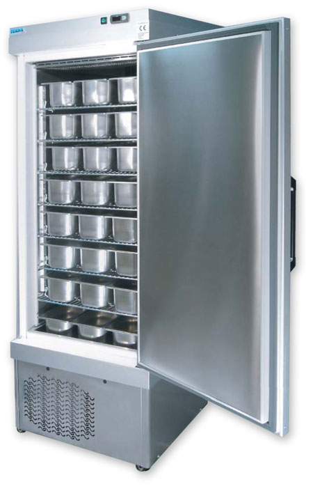 Refrigerated Cabinets - Teknaline Lab Model 5010 NFN